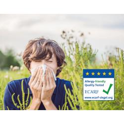 Putukavõrk raamis allergiavastane (õietolmu vastu)