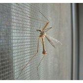 Putukavõrk raamis (sääskede ja putukatevastu)