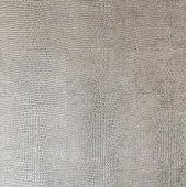 LL Leguan Silver